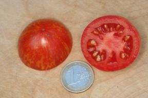 Frucht von Fuzzy Wuzzy - halbiert