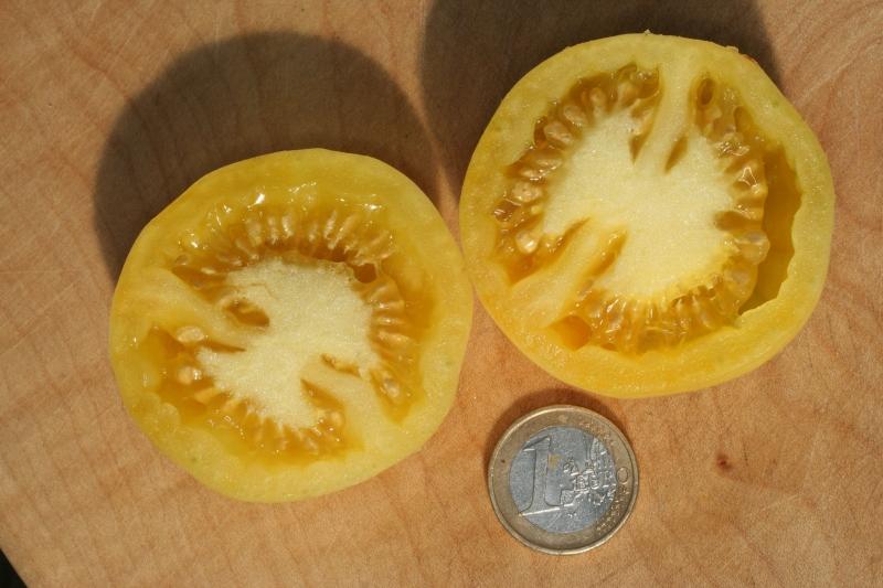 Aussen fühlt sie sich an wie ein Pfirsich - innen sieht sie aus wie eine Tomate